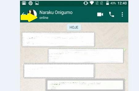 Como ver quem está online no WhatsApp GB